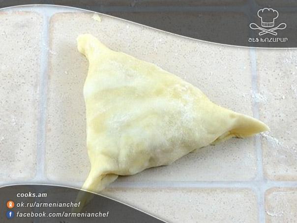 samsa-havi-msov-12