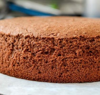 shokolade-biskvit-torti-hamar-10