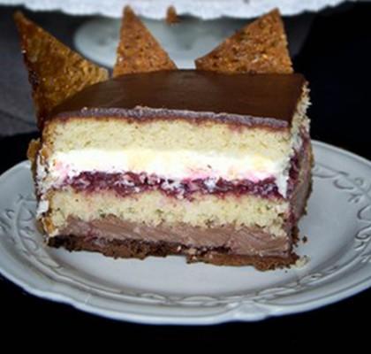 nushov-shokolade-tort-balov-11