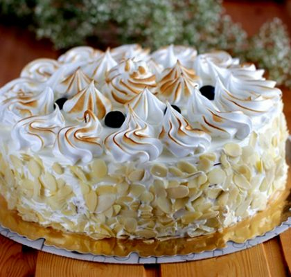 bezeov-tort-dzyunik-12