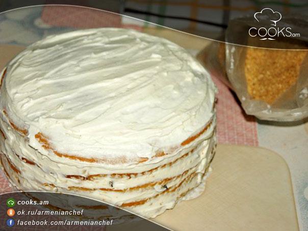 mexrov-tort-salorachrov