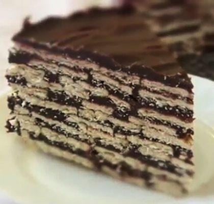 txvacqablitnerov-tort